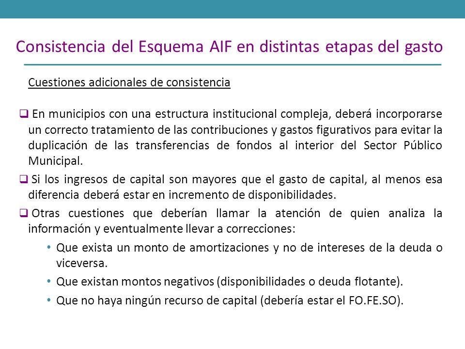 Cuestiones adicionales de consistencia En municipios con una estructura institucional compleja, deberá incorporarse un correcto tratamiento de las con