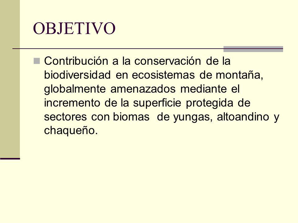 OBJETIVO Contribución a la conservación de la biodiversidad en ecosistemas de montaña, globalmente amenazados mediante el incremento de la superficie protegida de sectores con biomas de yungas, altoandino y chaqueño.