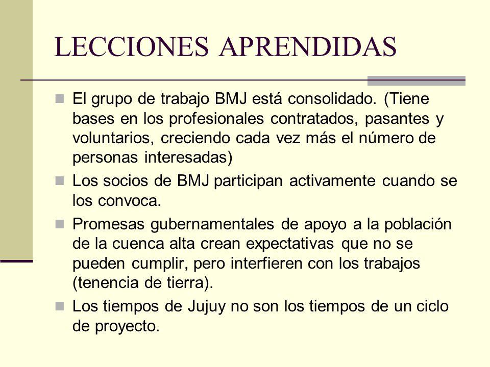 LECCIONES APRENDIDAS El grupo de trabajo BMJ está consolidado.