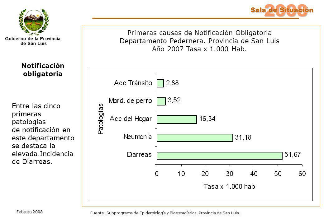 2008 Sala de Situación Sala de Situación Febrero 2008 Fuente: Subprograma de Epidemiología y Bioestadística. Provincia de San Luis. Primeras causas de