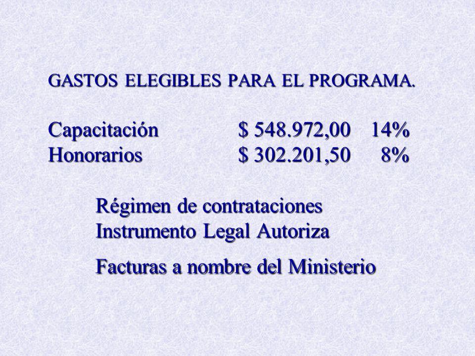 GASTOS ELEGIBLES PARA EL PROGRAMA. Capacitación$ 548.972,00 14% Honorarios$ 302.201,50 8% Régimen de contrataciones Instrumento Legal Autoriza Factura