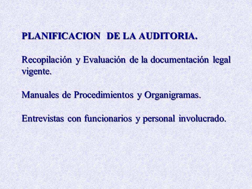 PLANIFICACION DE LA AUDITORIA. Recopilación y Evaluación de la documentación legal vigente. Manuales de Procedimientos y Organigramas. Entrevistas con