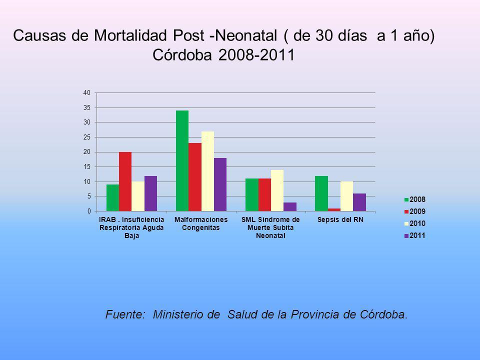 Causas de Mortalidad Post -Neonatal ( de 30 días a 1 año) Córdoba 2008-2011 Fuente: Ministerio de Salud de la Provincia de Córdoba.