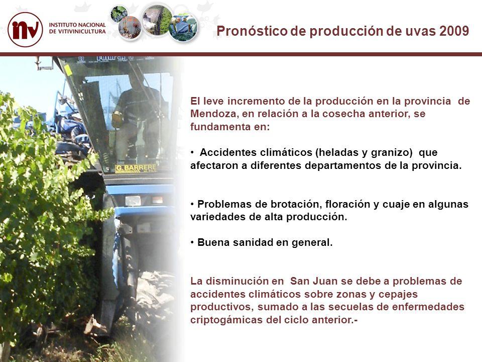 Pronóstico de producción de uvas 2009 El leve incremento de la producción en la provincia de Mendoza, en relación a la cosecha anterior, se fundamenta en: Accidentes climáticos (heladas y granizo) que afectaron a diferentes departamentos de la provincia.