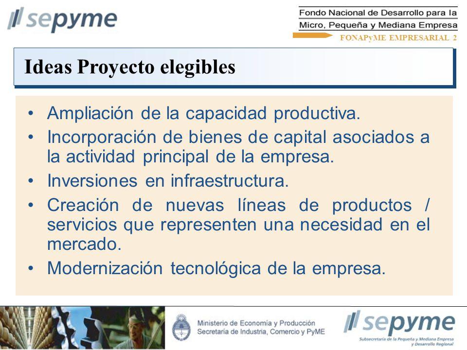Ampliación de la capacidad productiva. Incorporación de bienes de capital asociados a la actividad principal de la empresa. Inversiones en infraestruc