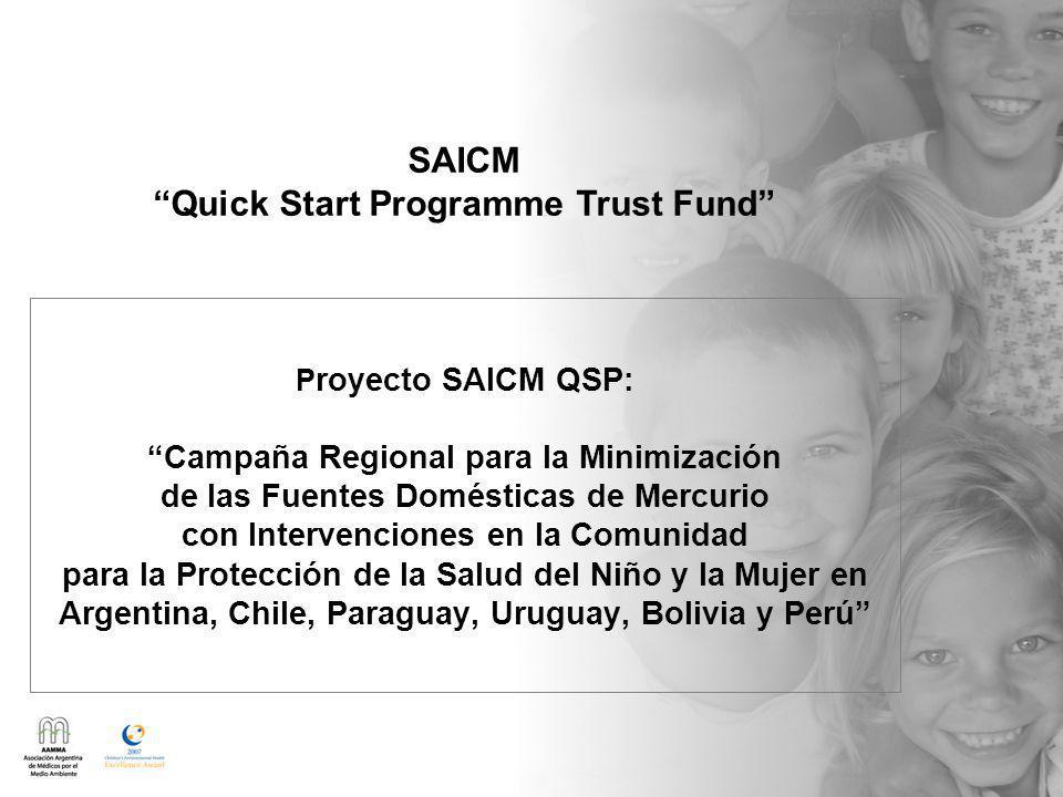 P royecto SAICM QSP: Campaña Regional para la Minimización de las Fuentes Domésticas de Mercurio con Intervenciones en la Comunidad para la Protección de la Salud del Niño y la Mujer en Argentina, Chile, Paraguay, Uruguay, Bolivia y Perú SAICM Quick Start Programme Trust Fund