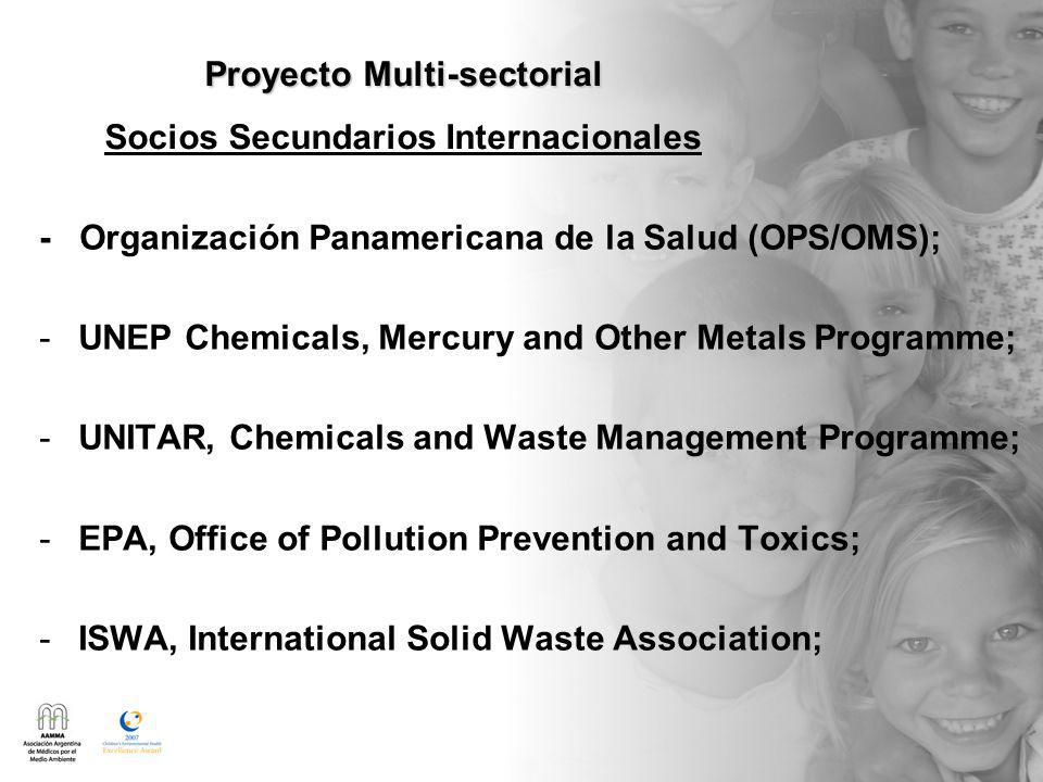 - Organización Panamericana de la Salud (OPS/OMS); -UNEP Chemicals, Mercury and Other Metals Programme; -UNITAR, Chemicals and Waste Management Programme; -EPA, Office of Pollution Prevention and Toxics; -ISWA, International Solid Waste Association; Proyecto Multi-sectorial Proyecto Multi-sectorial Socios Secundarios Internacionales