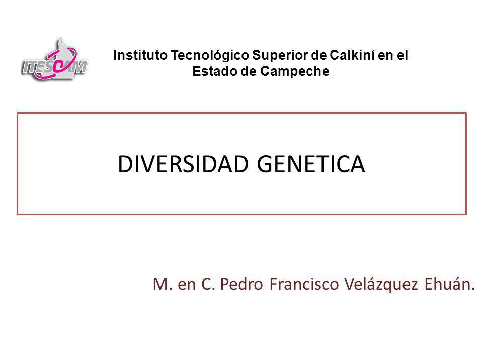 DIVERSIDAD GENETICA M.en C. Pedro Francisco Velázquez Ehuán.