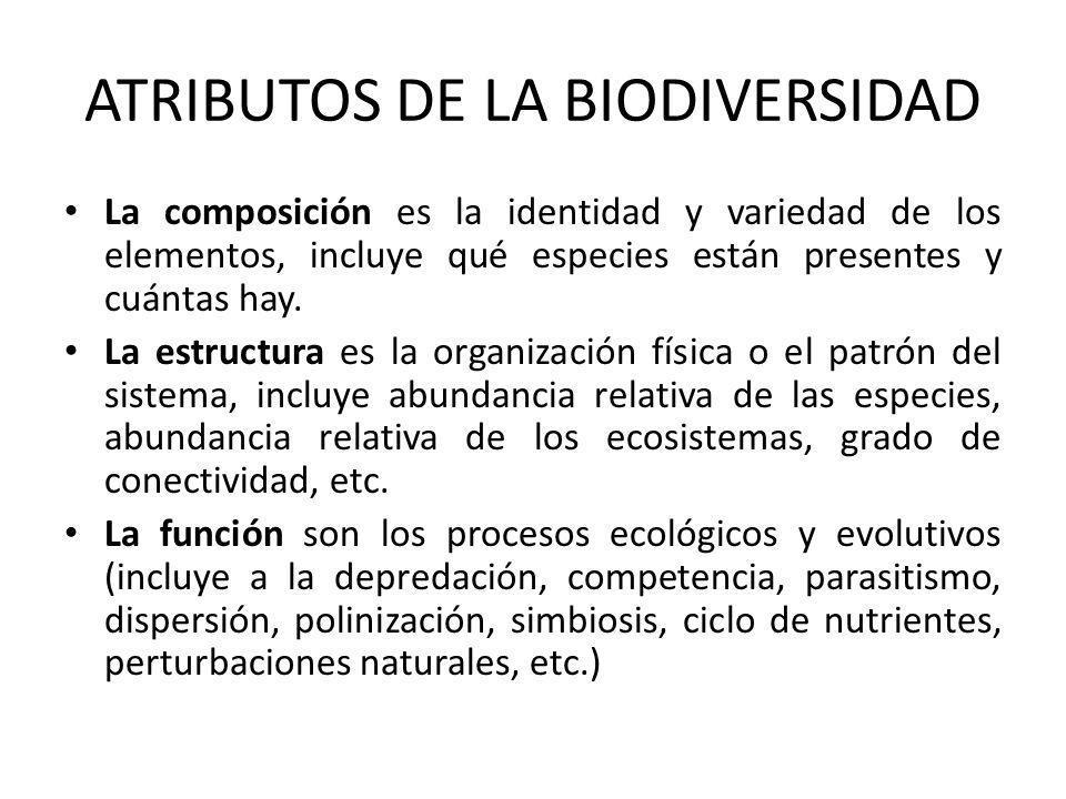ATRIBUTOS DE LA BIODIVERSIDAD La composición es la identidad y variedad de los elementos, incluye qué especies están presentes y cuántas hay.