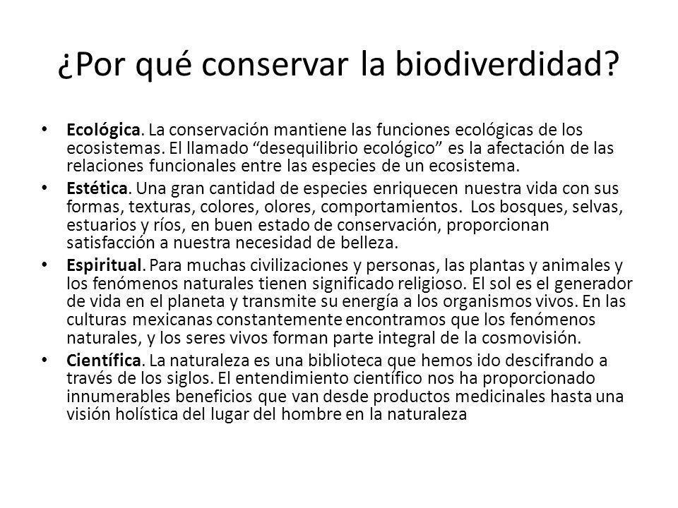 ¿Por qué conservar la biodiverdidad.Ecológica.
