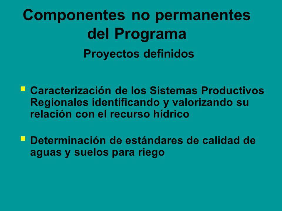 Componentes no permanentes del Programa Proyectos definidos Caracterización de los Sistemas Productivos Regionales identificando y valorizando su relación con el recurso hídrico Determinación de estándares de calidad de aguas y suelos para riego