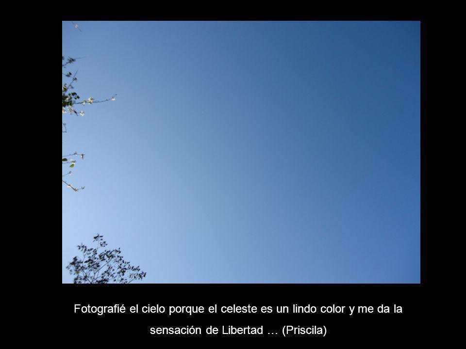 Fotografié el cielo porque el celeste es un lindo color y me da la sensación de Libertad … (Priscila)