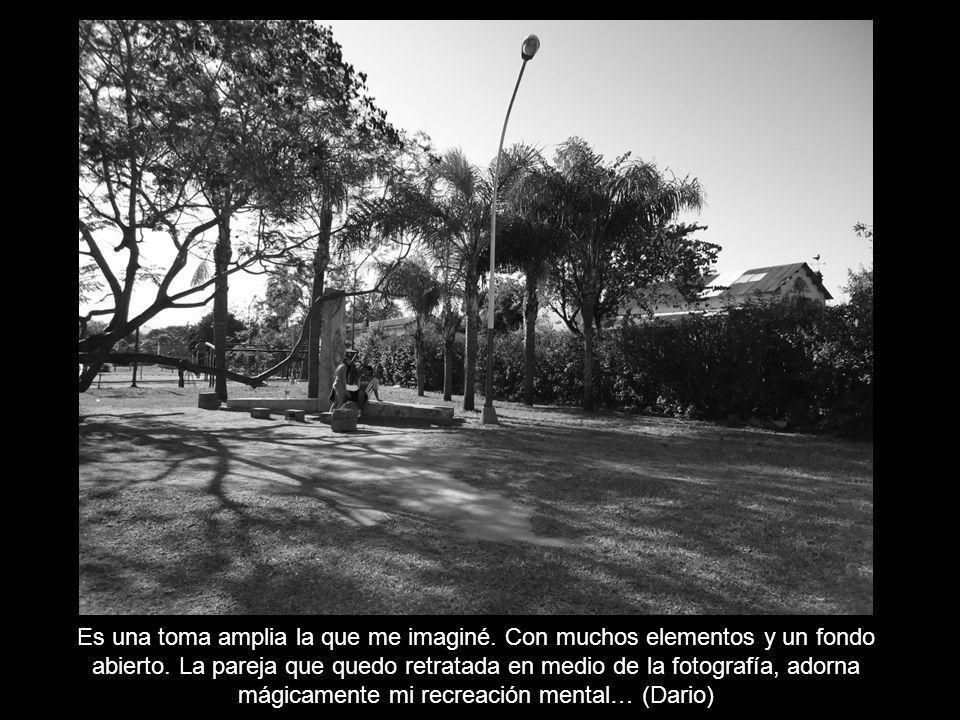 Mi imagen fotográfica es la recreación de un parque primaveral y melancólico.