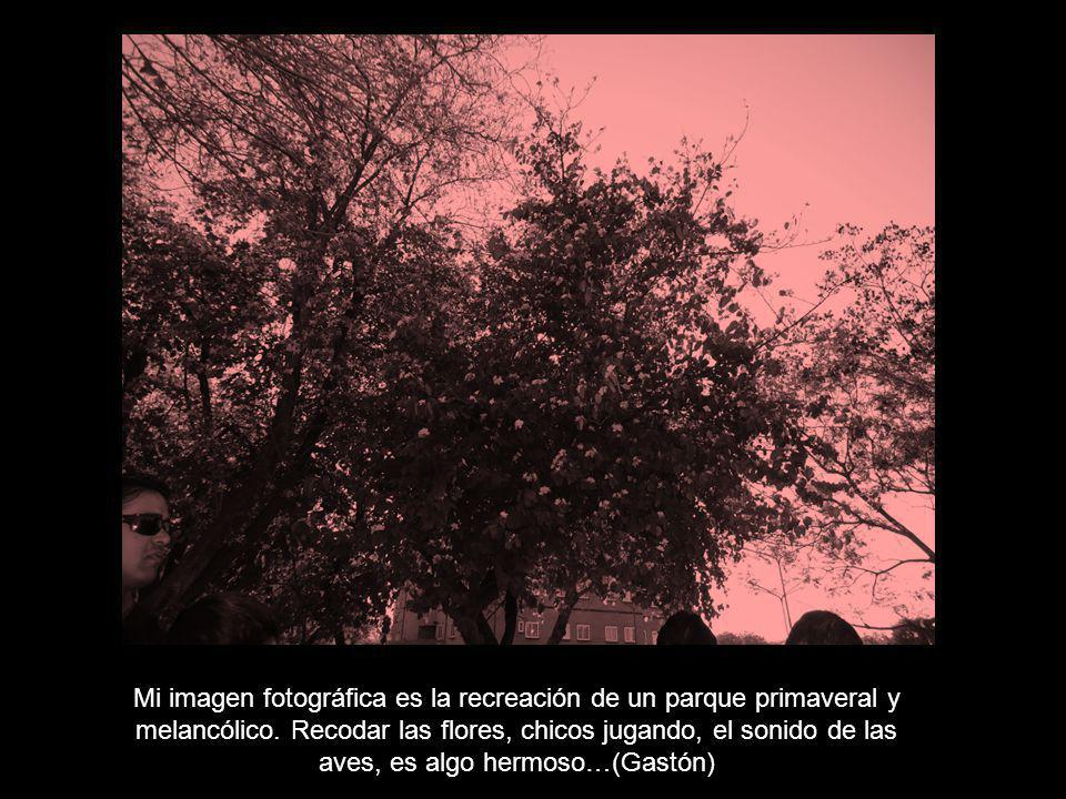 Los artífices de las fotografías en el arte de imaginar….