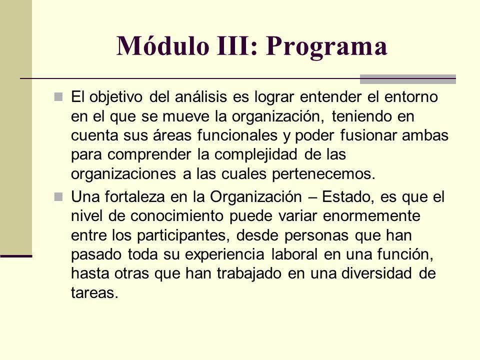 Módulo III: Programa El objetivo del análisis es lograr entender el entorno en el que se mueve la organización, teniendo en cuenta sus áreas funcionales y poder fusionar ambas para comprender la complejidad de las organizaciones a las cuales pertenecemos.