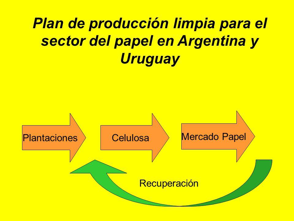 Plan de producción limpia para el sector del papel en Argentina y Uruguay PlantacionesCelulosa Mercado Papel Recuperación