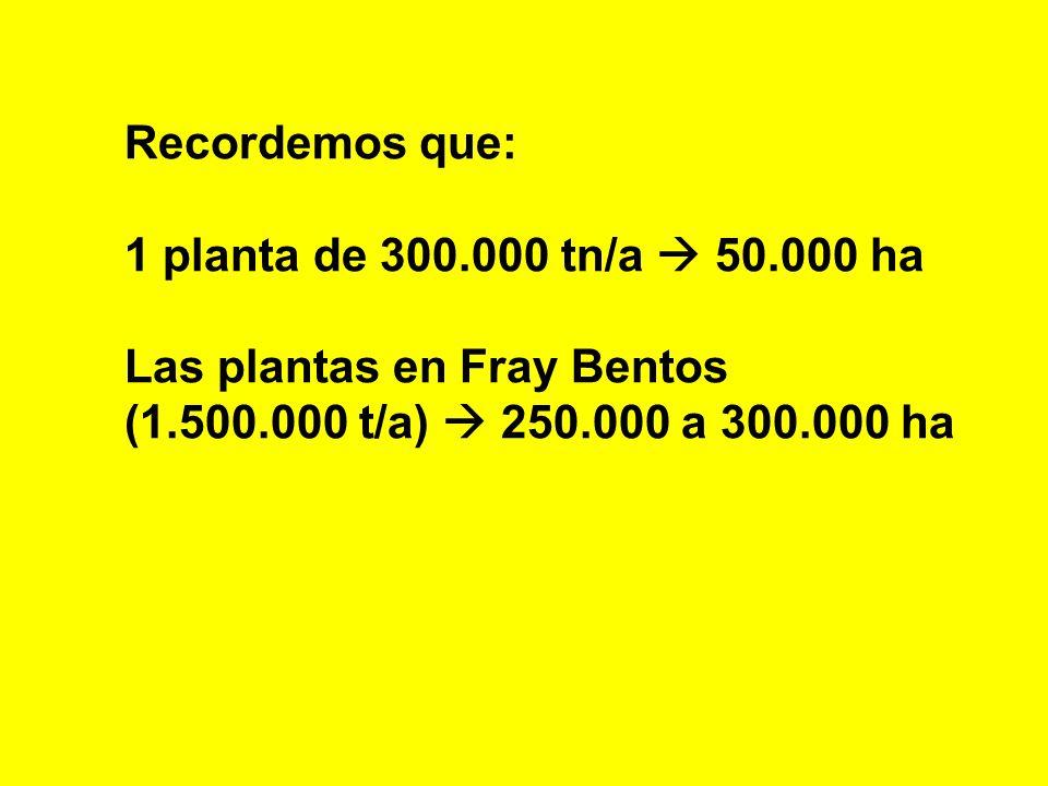 Recordemos que: 1 planta de 300.000 tn/a 50.000 ha Las plantas en Fray Bentos (1.500.000 t/a) 250.000 a 300.000 ha