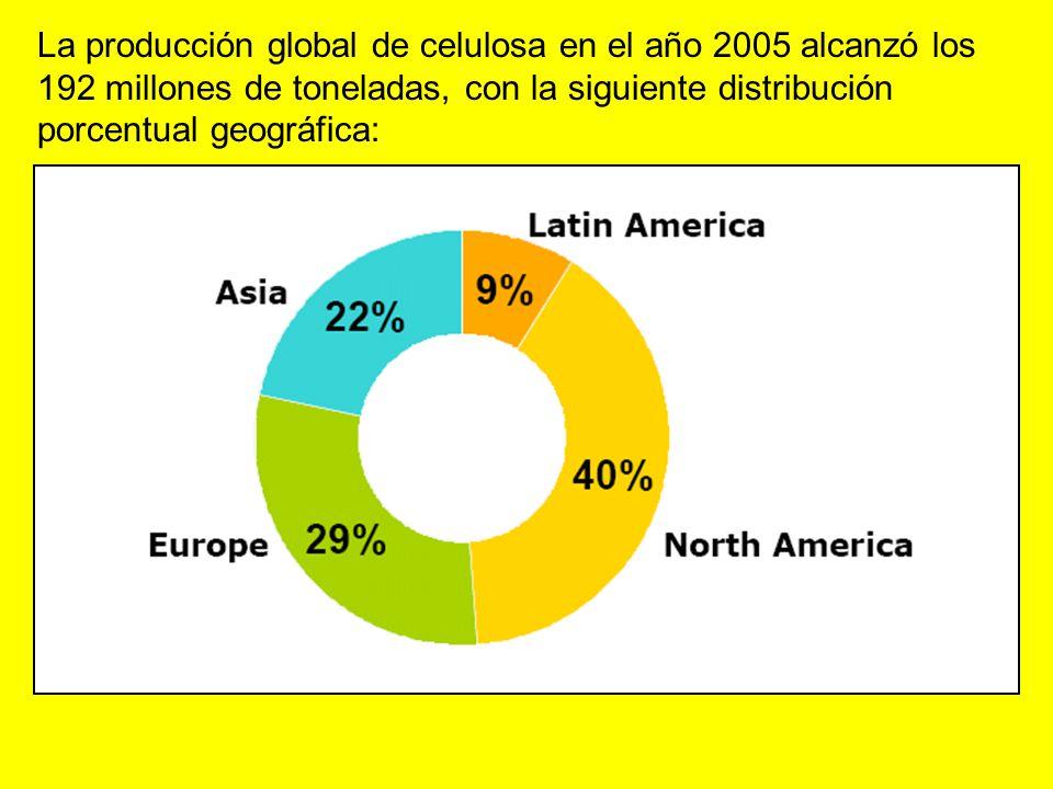 La producción global de celulosa en el año 2005 alcanzó los 192 millones de toneladas, con la siguiente distribución porcentual geográfica: