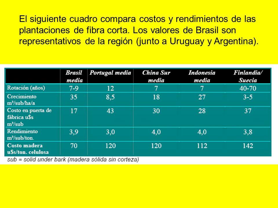 El siguiente cuadro compara costos y rendimientos de las plantaciones de fibra corta.