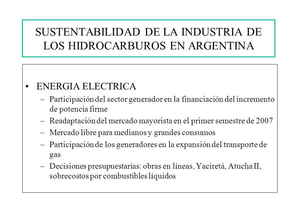 SUSTENTABILIDAD DE LA INDUSTRIA DE LOS HIDROCARBUROS EN ARGENTINA ENERGIA ELECTRICA –Participación del sector generador en la financiación del incremento de potencia firme –Readaptación del mercado mayorista en el primer semestre de 2007 –Mercado libre para medianos y grandes consumos –Participación de los generadores en la expansión del transporte de gas –Decisiones presupuestarias: obras en líneas, Yaciretá, Atucha II, sobrecostos por combustibles líquidos