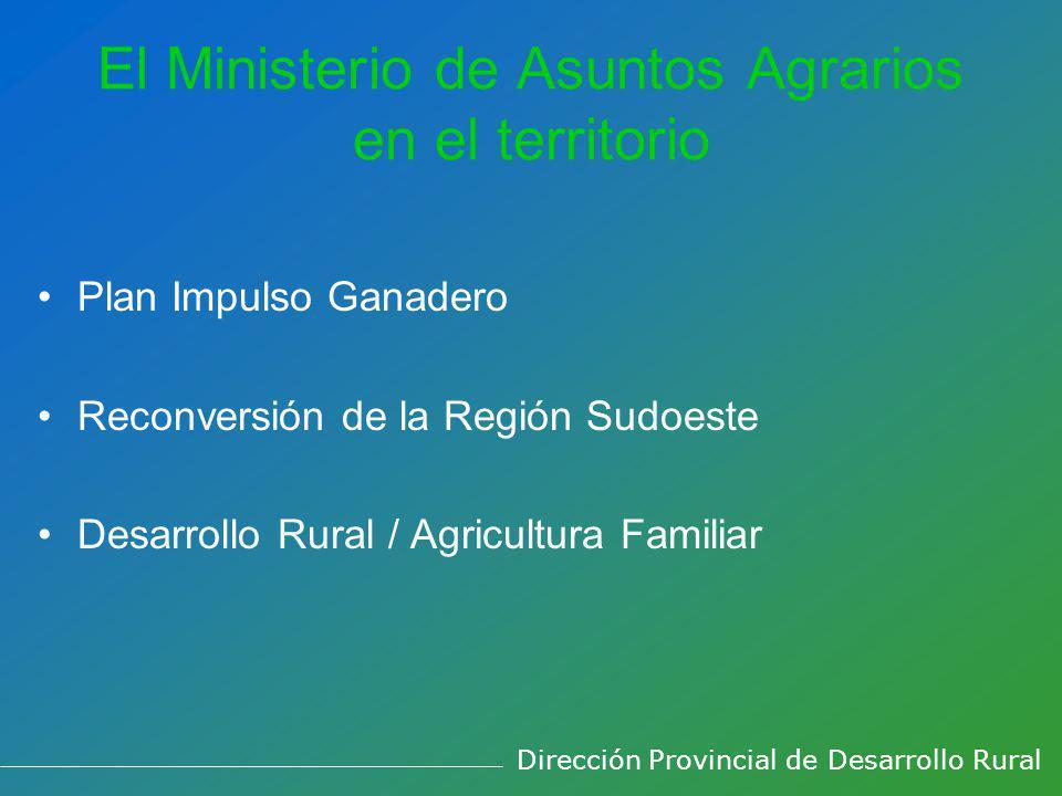 El Ministerio de Asuntos Agrarios en el territorio Plan Impulso Ganadero Reconversión de la Región Sudoeste Desarrollo Rural / Agricultura Familiar Dirección Provincial de Desarrollo Rural