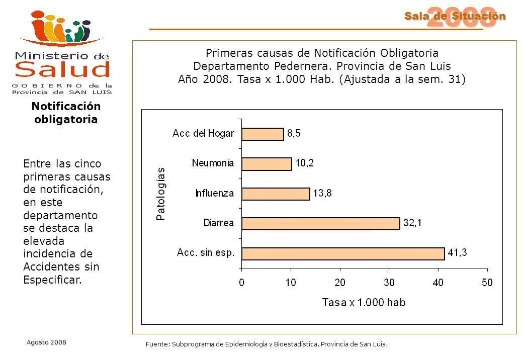 2008 Sala de Situación Sala de Situación Agosto 2008 Fuente: Subprograma de Epidemiología y Bioestadística. Provincia de San Luis. Primeras causas de