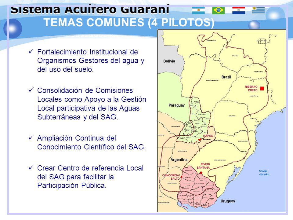 TEMAS COMUNES (4 PILOTOS) Fortalecimiento Institucional de Organismos Gestores del agua y del uso del suelo. Consolidación de Comisiones Locales como