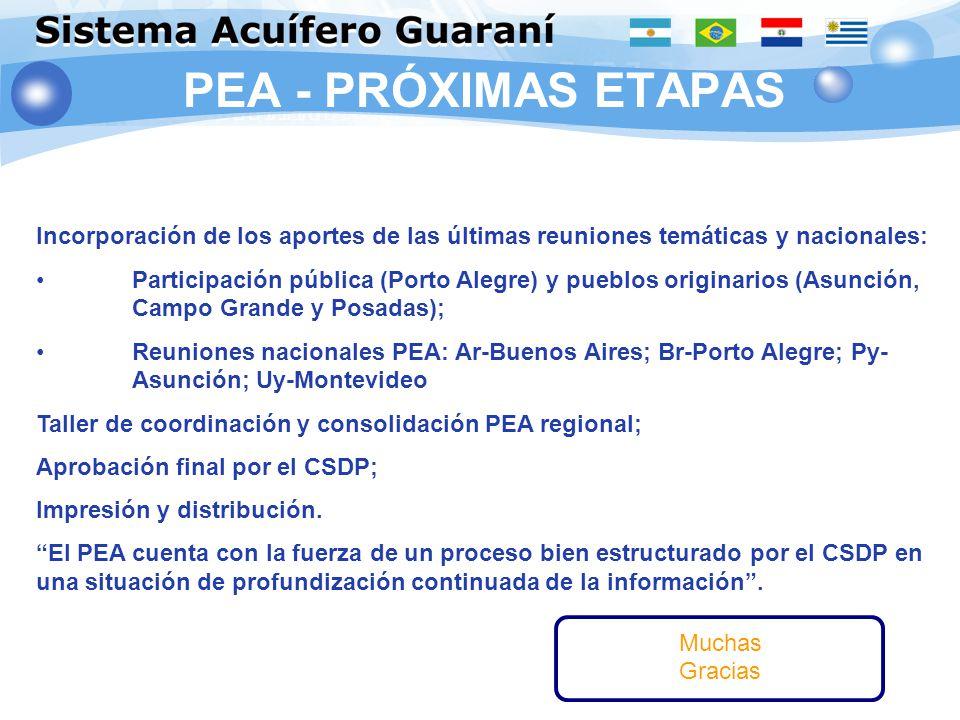 PEA - PRÓXIMAS ETAPAS PROCESO CONTENIDO CONSENSOFORMA Incorporación de los aportes de las últimas reuniones temáticas y nacionales: Participación públ