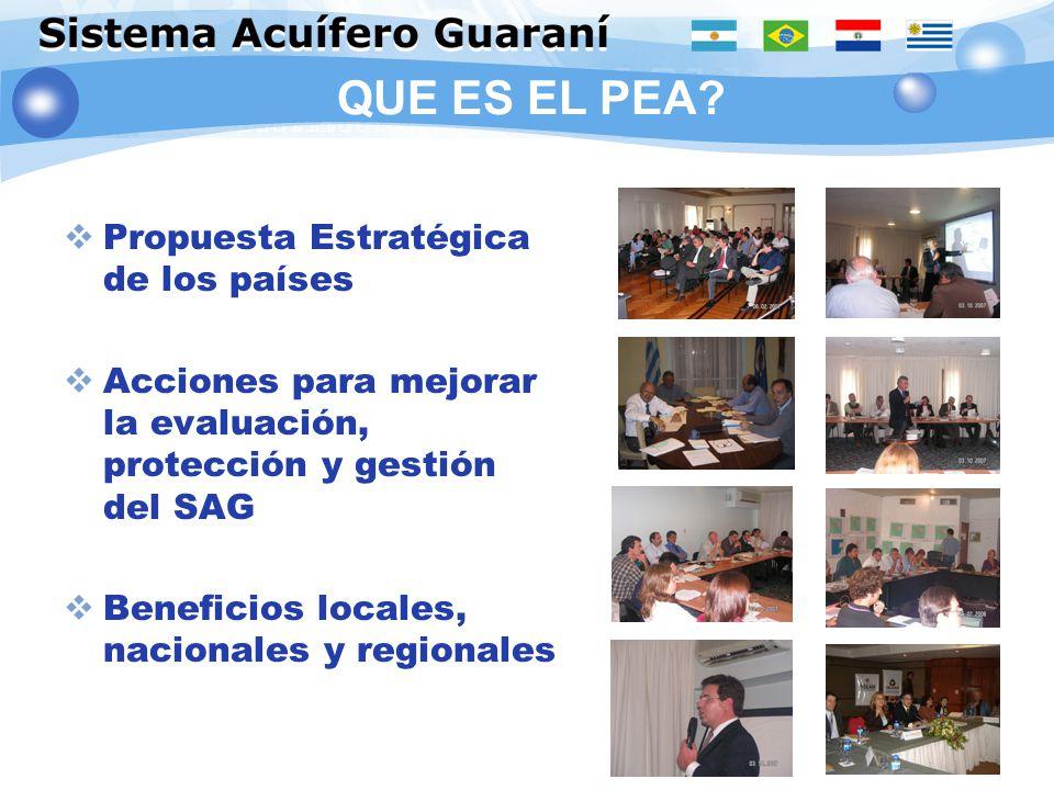 QUE ES EL PEA? Propuesta Estratégica de los países Acciones para mejorar la evaluación, protección y gestión del SAG Beneficios locales, nacionales y