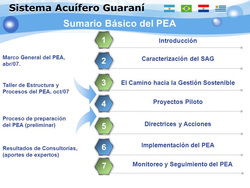 Sumario Básico del PEA Introducción 1 Caracterización del SAG 2 El Camino hacia la Gestión Sostenible 3 Proyectos Piloto 4 Directrices y Acciones 5 Im