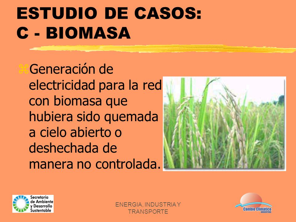ENERGIA, INDUSTRIA Y TRANSPORTE ESTUDIO DE CASOS: C - BIOMASA zGeneración de electricidad para la red con biomasa que hubiera sido quemada a cielo abi