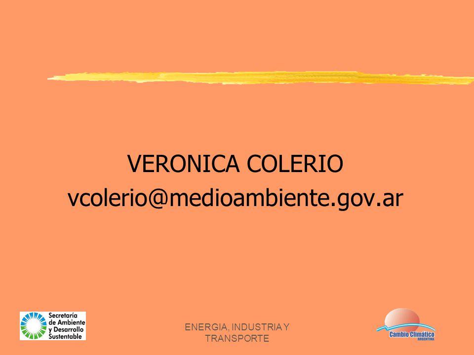 ENERGIA, INDUSTRIA Y TRANSPORTE VERONICA COLERIO vcolerio@medioambiente.gov.ar