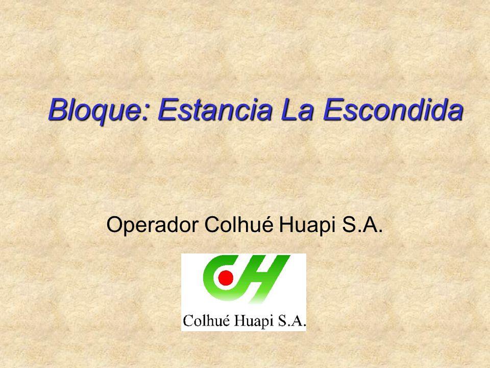 Bloque: Estancia La Escondida Operador Colhué Huapi S.A.