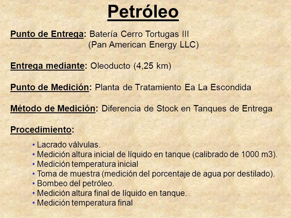 Petróleo Punto de Entrega: Batería Cerro Tortugas III (Pan American Energy LLC) Entrega mediante: Oleoducto (4,25 km) Punto de Medición: Planta de Tra