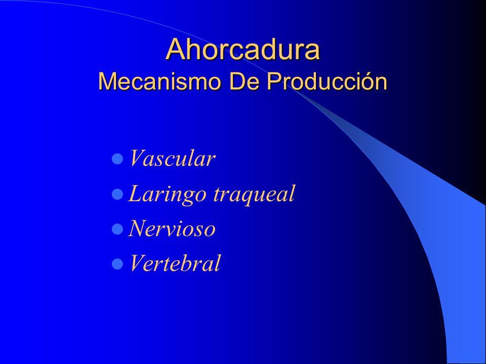 Ahorcadura Mecanismo De Producción Vascular Laringo traqueal Nervioso Vertebral