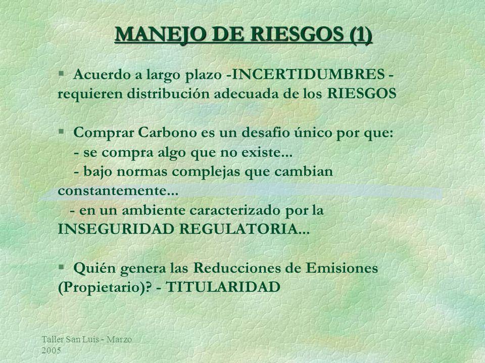Taller San Luis - Marzo 2005 MANEJO DE RIESGOS (1) MANEJO DE RIESGOS (1) Acuerdo a largo plazo -INCERTIDUMBRES - requieren distribución adecuada de los RIESGOS § Comprar Carbono es un desafio único por que: - se compra algo que no existe...