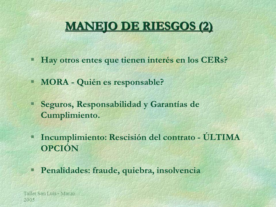 Taller San Luis - Marzo 2005 MANEJO DE RIESGOS (2) §Hay otros entes que tienen interés en los CERs.