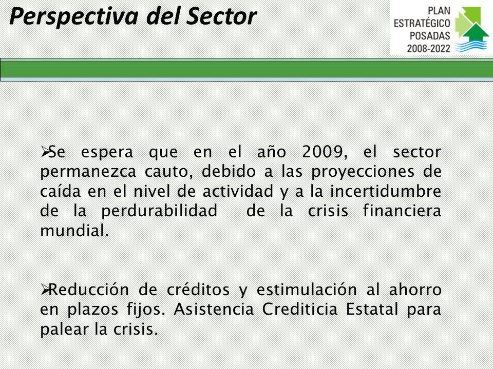 Perspectiva del Sector Se espera que en el año 2009, el sector permanezca cauto, debido a las proyecciones de caída en el nivel de actividad y a la incertidumbre de la perdurabilidad de la crisis financiera mundial.
