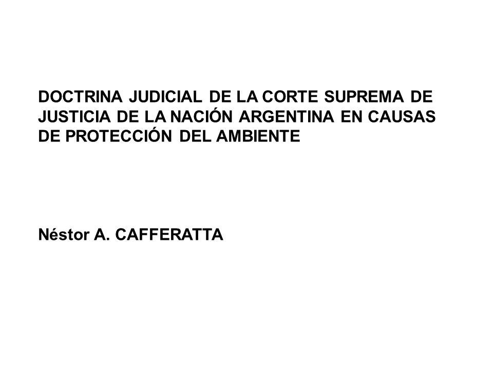 DOCTRINA JUDICIAL DE LA CORTE SUPREMA DE JUSTICIA DE LA NACIÓN ARGENTINA EN CAUSAS DE PROTECCIÓN DEL AMBIENTE Néstor A. CAFFERATTA