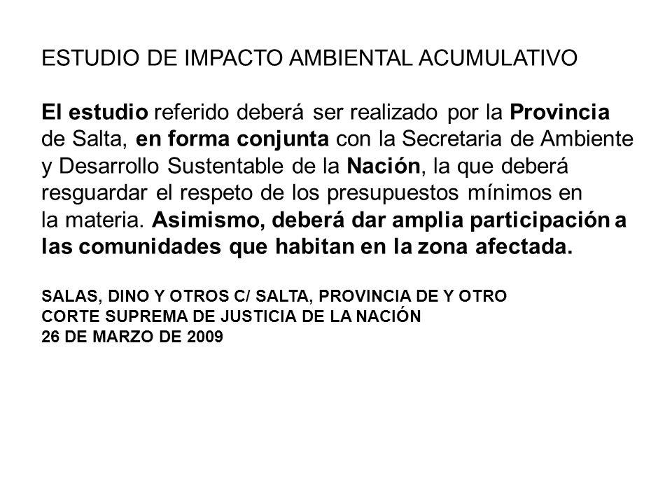 ESTUDIO DE IMPACTO AMBIENTAL ACUMULATIVO El estudio referido deberá ser realizado por la Provincia de Salta, en forma conjunta con la Secretaria de Am