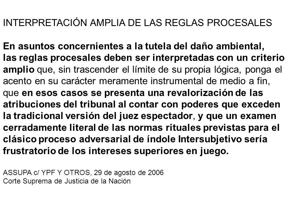 INTERPRETACIÓN AMPLIA DE LAS REGLAS PROCESALES En asuntos concernientes a la tutela del daño ambiental, las reglas procesales deben ser interpretadas