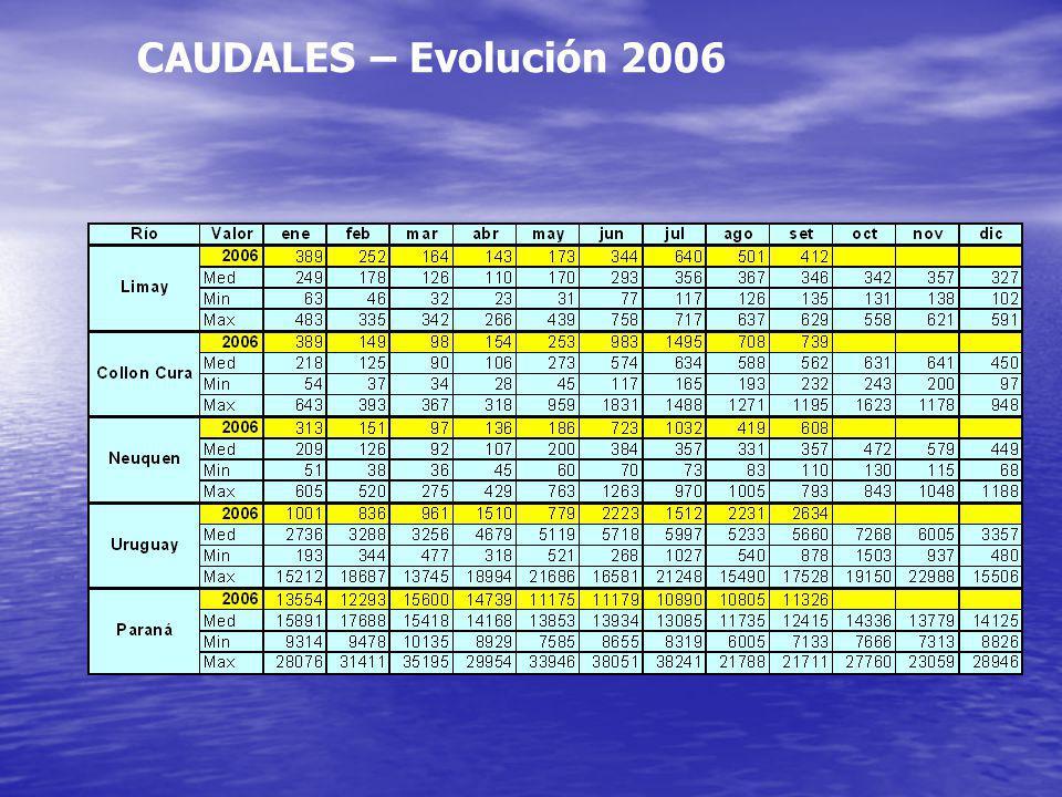 CAUDALES – Evolución 2006
