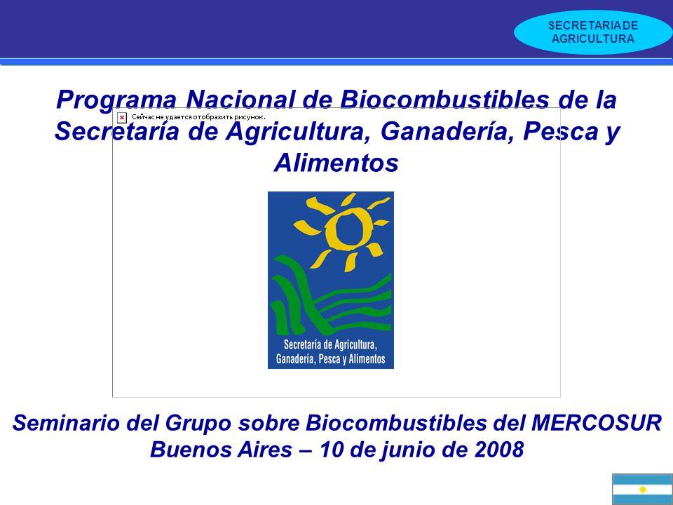 SECRETARIA DE AGRICULTURA Programa Nacional de Biocombustibles de la Secretaría de Agricultura, Ganadería, Pesca y Alimentos Seminario del Grupo sobre