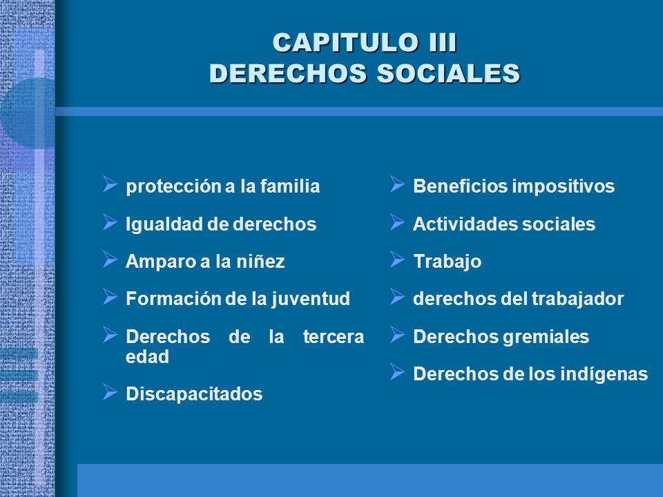 CAPITULO III DERECHOS SOCIALES protección a la familia Igualdad de derechos Amparo a la niñez Formación de la juventud Derechos de la tercera edad Dis
