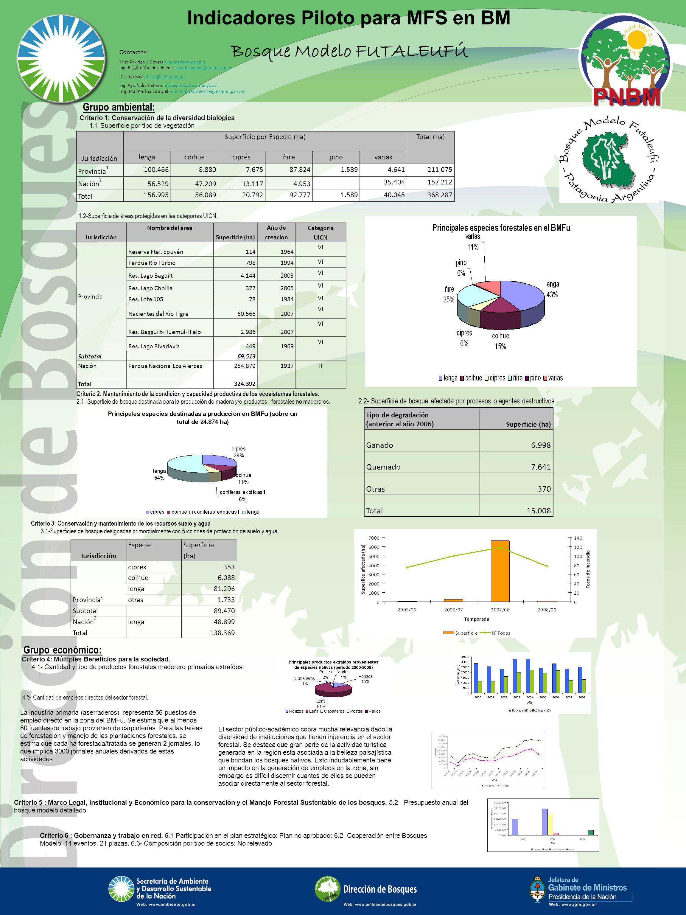 Indicadores Piloto para MFS en BM Bosque Modelo FUTALEUFÚ Criterio 4: Múltiples Beneficios para la sociedad. 4.1- Cantidad y tipo de productos foresta