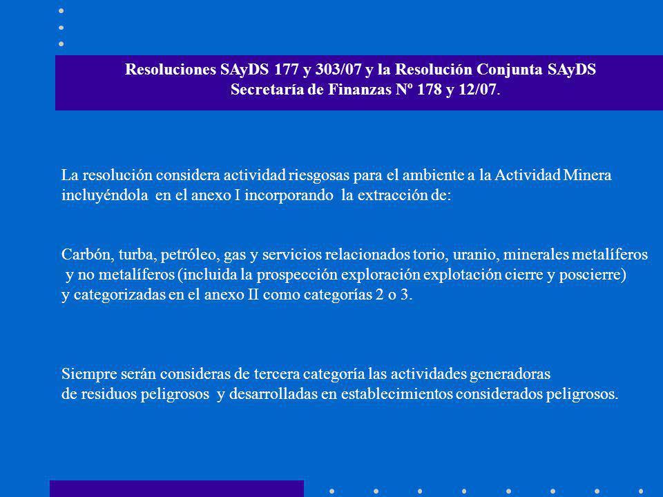 Resoluciones SAyDS 177 y 303/07 y la Resolución Conjunta SAyDS Secretaría de Finanzas Nº 178 y 12/07. La resolución considera actividad riesgosas para