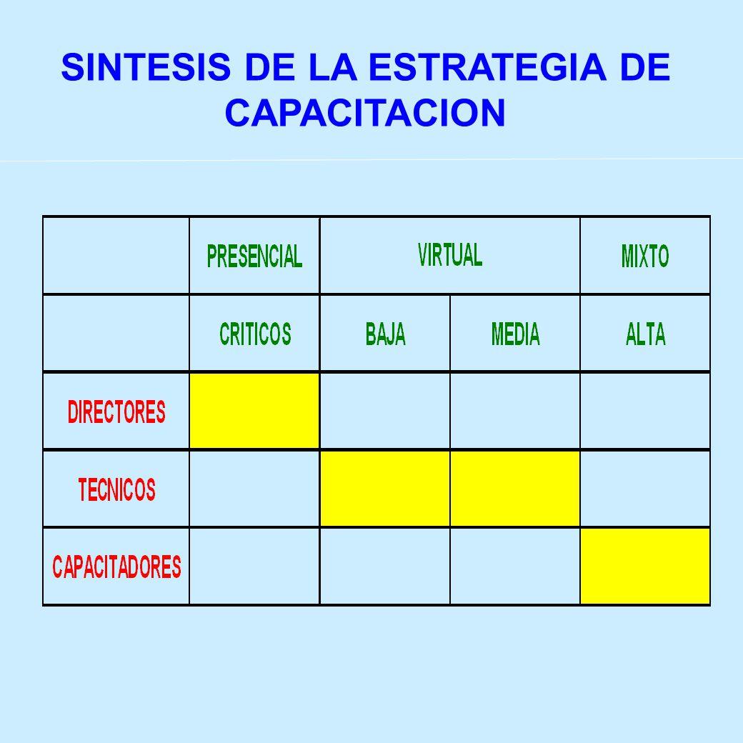 SINTESIS DE LA ESTRATEGIA DE CAPACITACION
