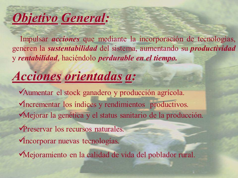 Objetivo General: sustentabilidad perdurable en el tiempo.