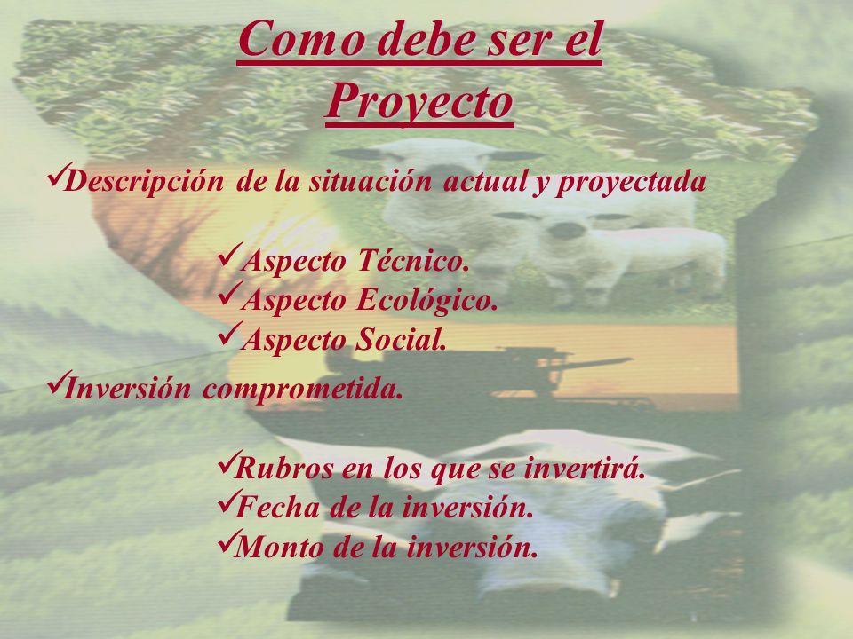 Como debe ser el Proyecto Descripción de la situación actual y proyectada Aspecto Técnico.