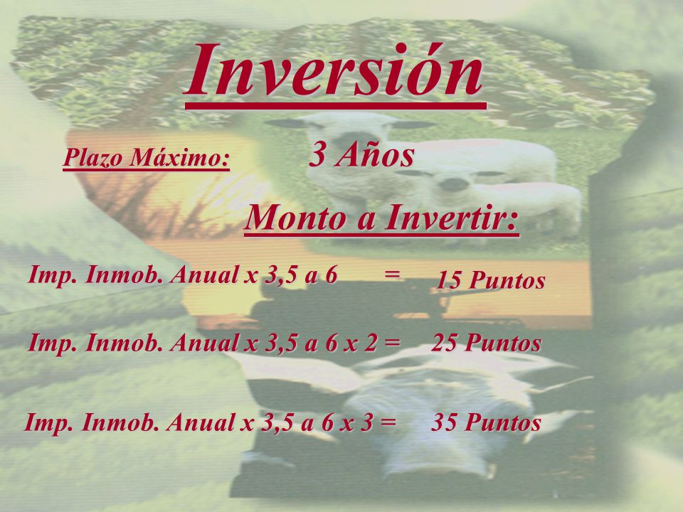 Inversión Plazo Máximo: 3 Años Monto a Invertir: Imp.